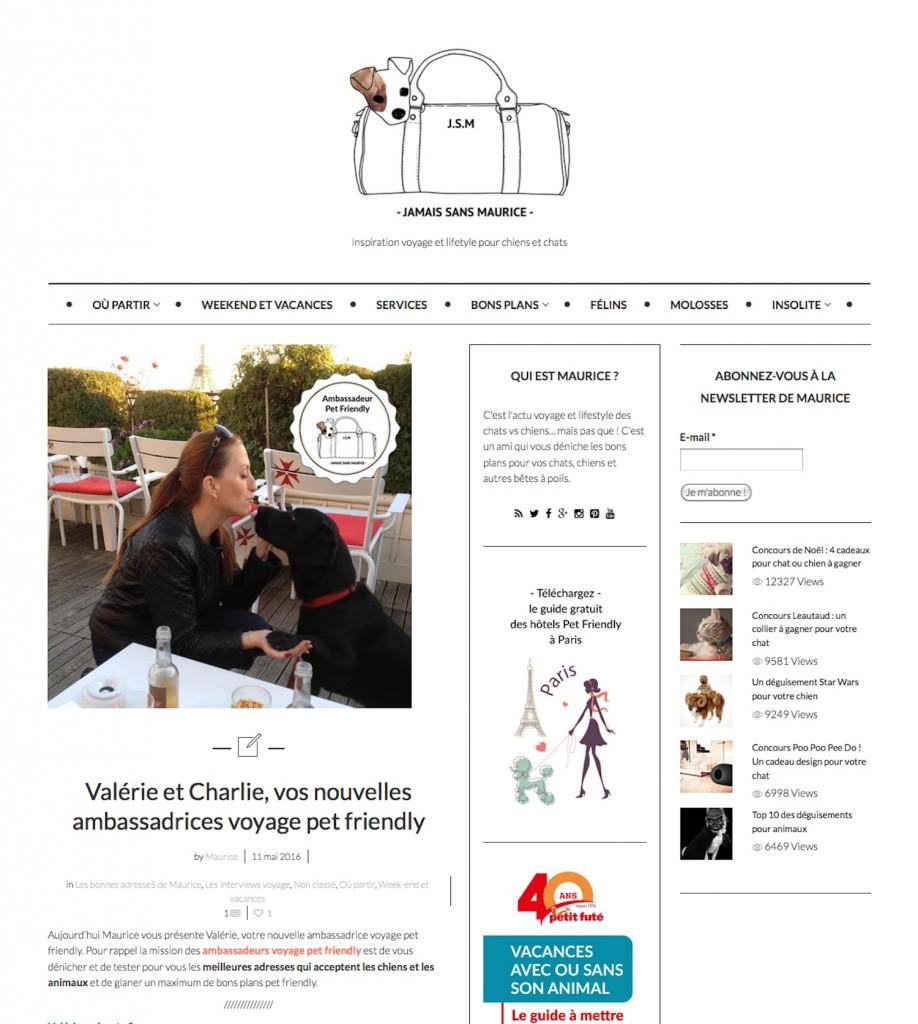 Article et interview Jamais Sans Maurice 110516