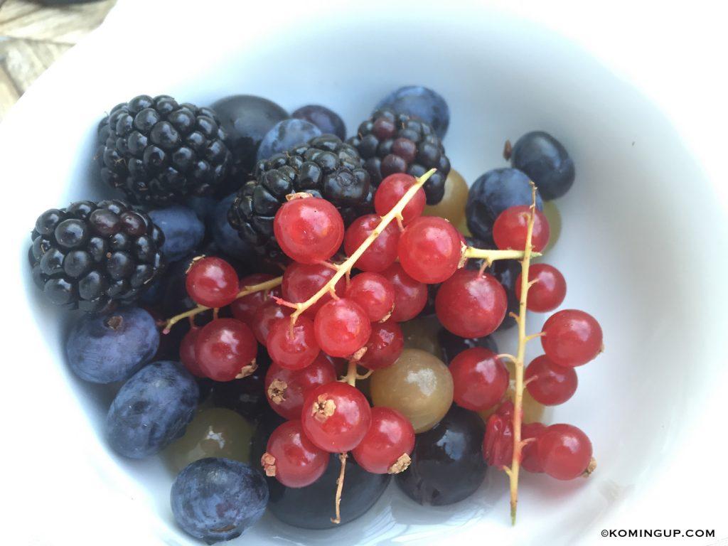 le-domaine-de-manville-hotel-cinq-etoiles-les-baux-de-provence-petit-dejeuner-fruits-rouges