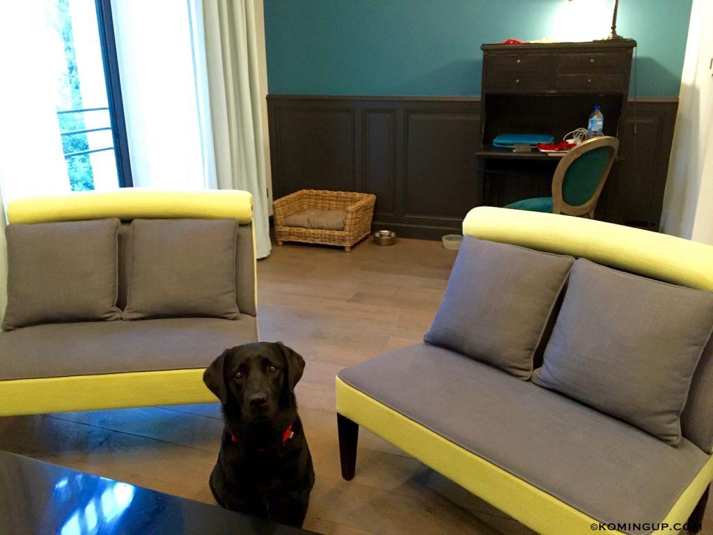 le-domaine-de-manville-hotel-cinq-etoiles-les-baux-de-provence-salon-suite-executive