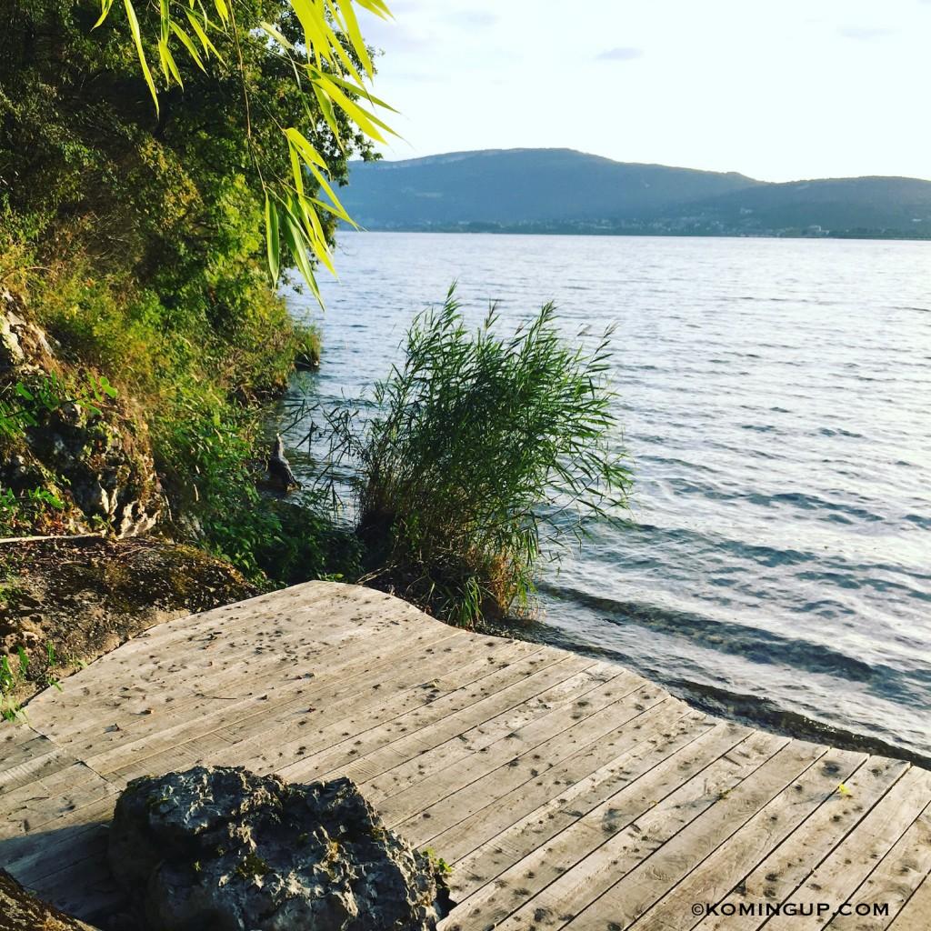 Maison-hôtes-la-turquoise-egarée-bourget-du-lac-plage-privee