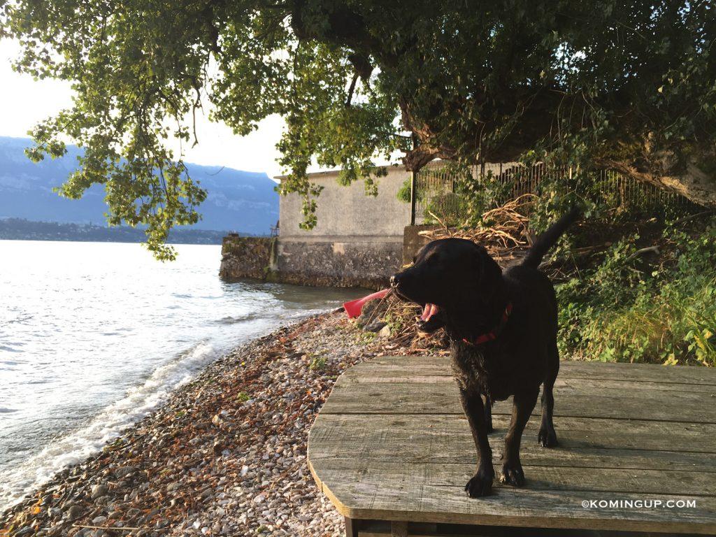aix-les-bains-riviera-des-alpes-charlie-plage-privee-maison-ho%cc%82tes-la-turquoise-egaree