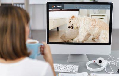 video-de-surveillance-pour-chiens-via-ordinateur